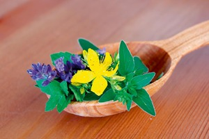 19358_stock-photo-herbal-medicine-shutterstock_79885168_300x0[1]