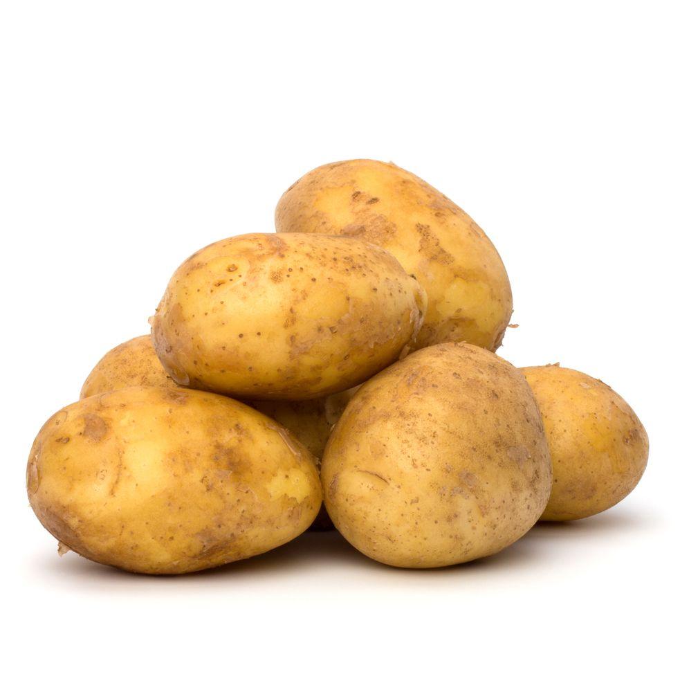 ilustracija krompira.