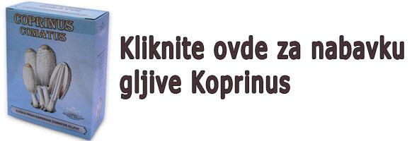 koprinus-nabavka