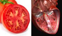 paradajz-srce