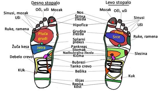 masaža stopala infografik.