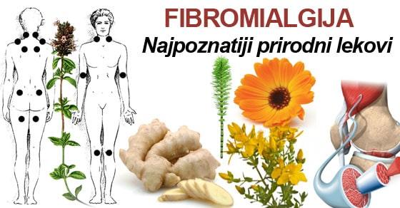 FIBROMIALGIJA ilustracija.