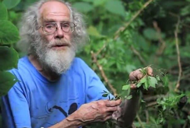 čovjek sa biljkama u ruci.