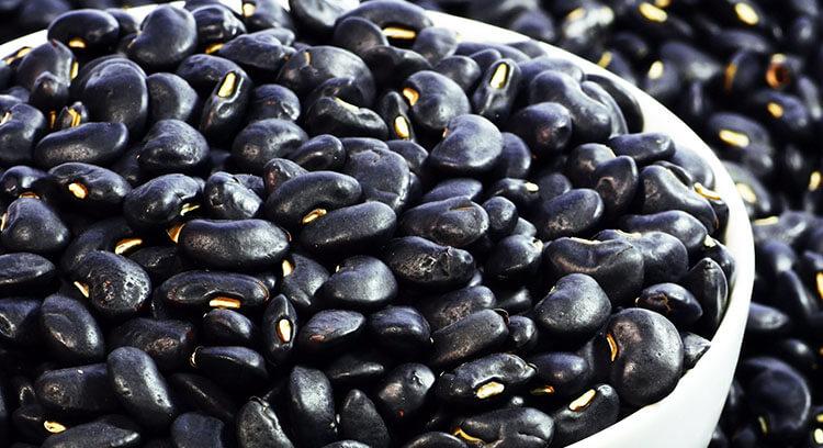 crni pasulj lekovita svojstva