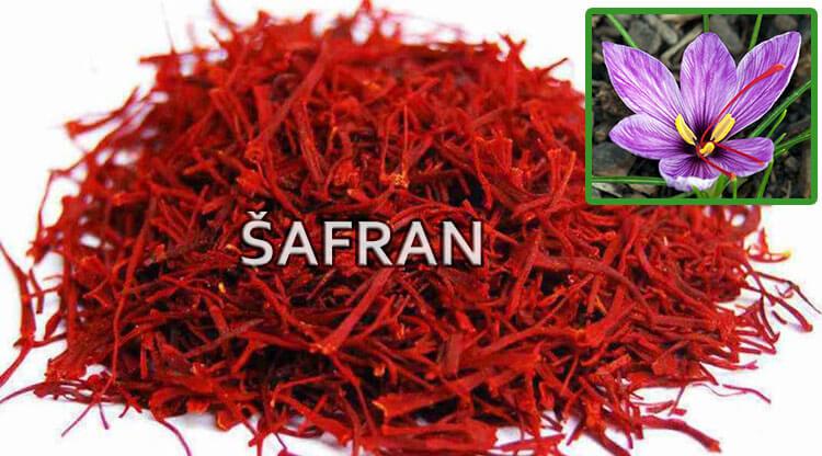 lekovita svojstva safrana