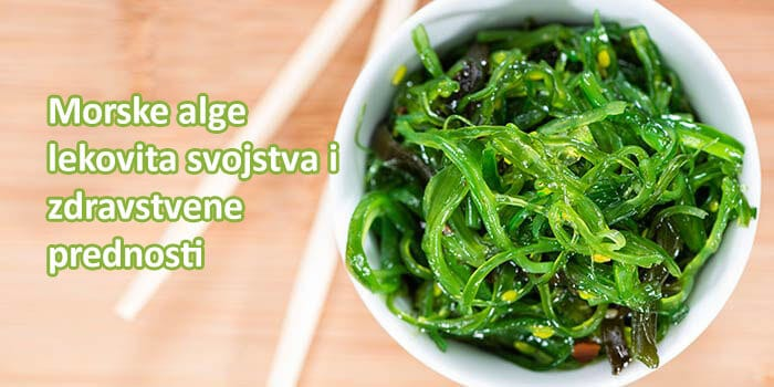 morske alge ilustracija.