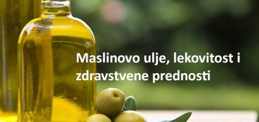 masilnovo ulje lekovitost